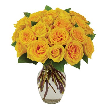 Yellow Rose Bouquet (BF239-11)